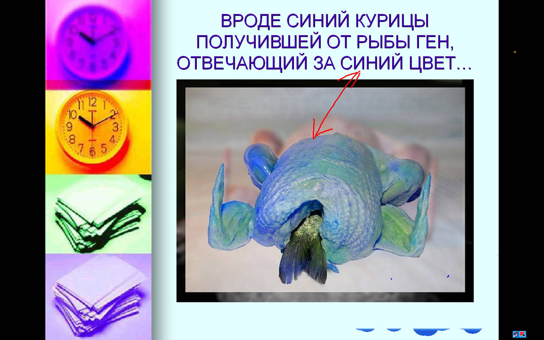 hello_html_3e67343b.jpg