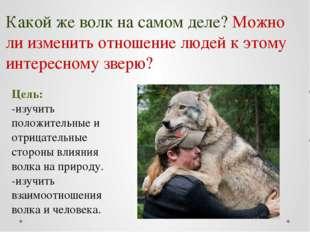 Цель: -изучить положительные и отрицательные стороны влияния волка на природу