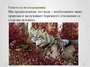 Гипотеза исследования: Мы предположили, что волк – необходимое звено природы