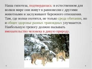 Наша гипотеза, подтвердилась: в естественном для волков мире они живут в равн