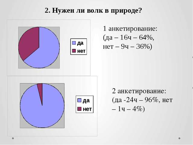 2. Нужен ли волк в природе? 1 анкетирование: (да – 16ч – 64%, нет – 9ч – 36%)...