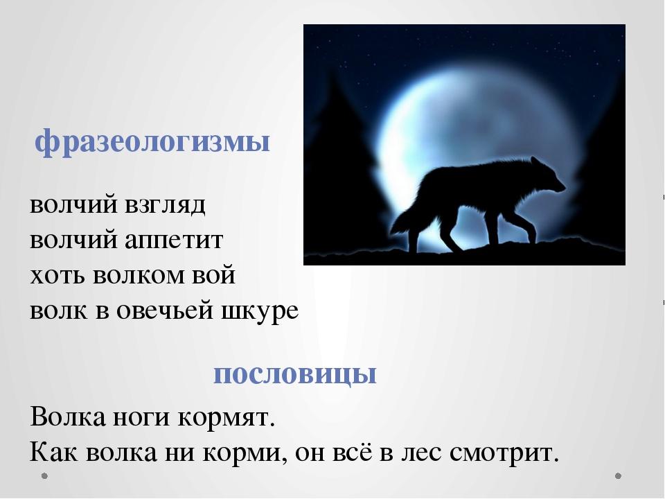 волчий взгляд волчий аппетит хоть волком вой волк в овечьей шкуре Волка ноги...