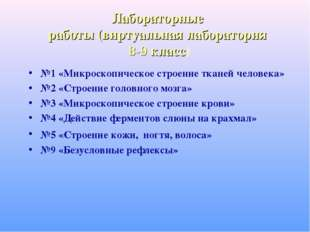 Лабораторные работы (виртуальная лаборатория 8-9 класс) №1 «Микроскопическое