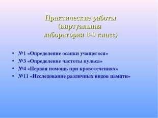 Практические работы (виртуальная лаборатория 8-9 класс) №1 «Определение осанк