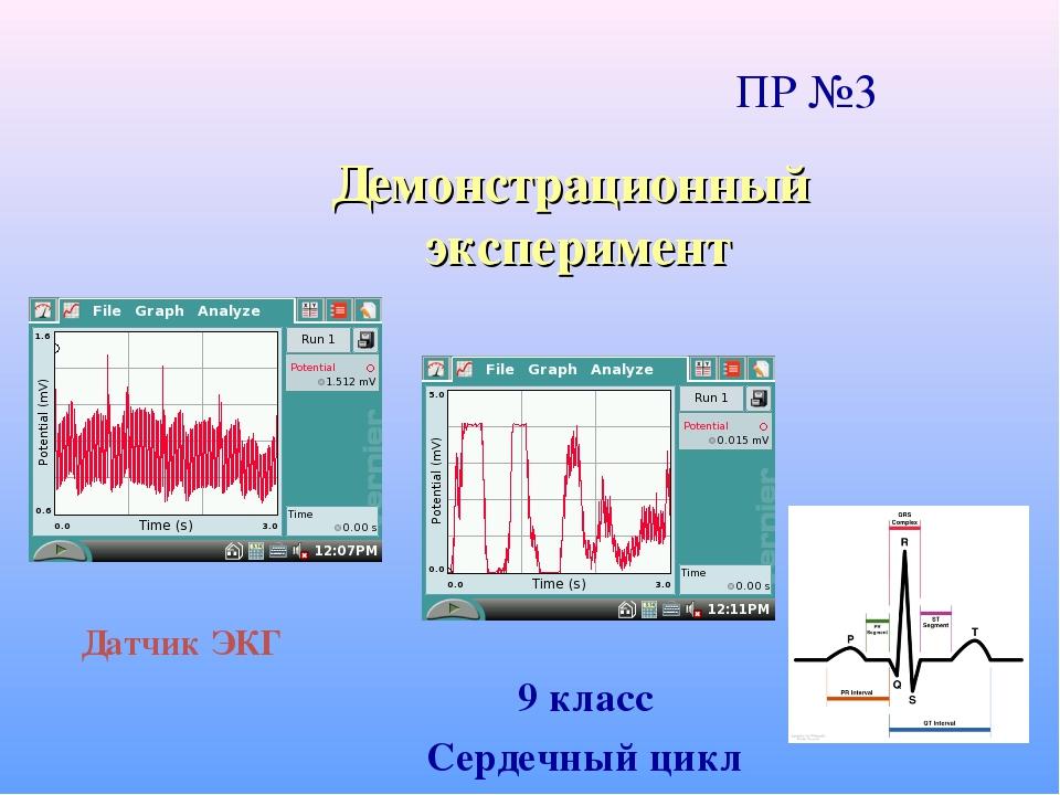 Демонстрационный эксперимент 9 класс Сердечный цикл Датчик ЭКГ ПР №3