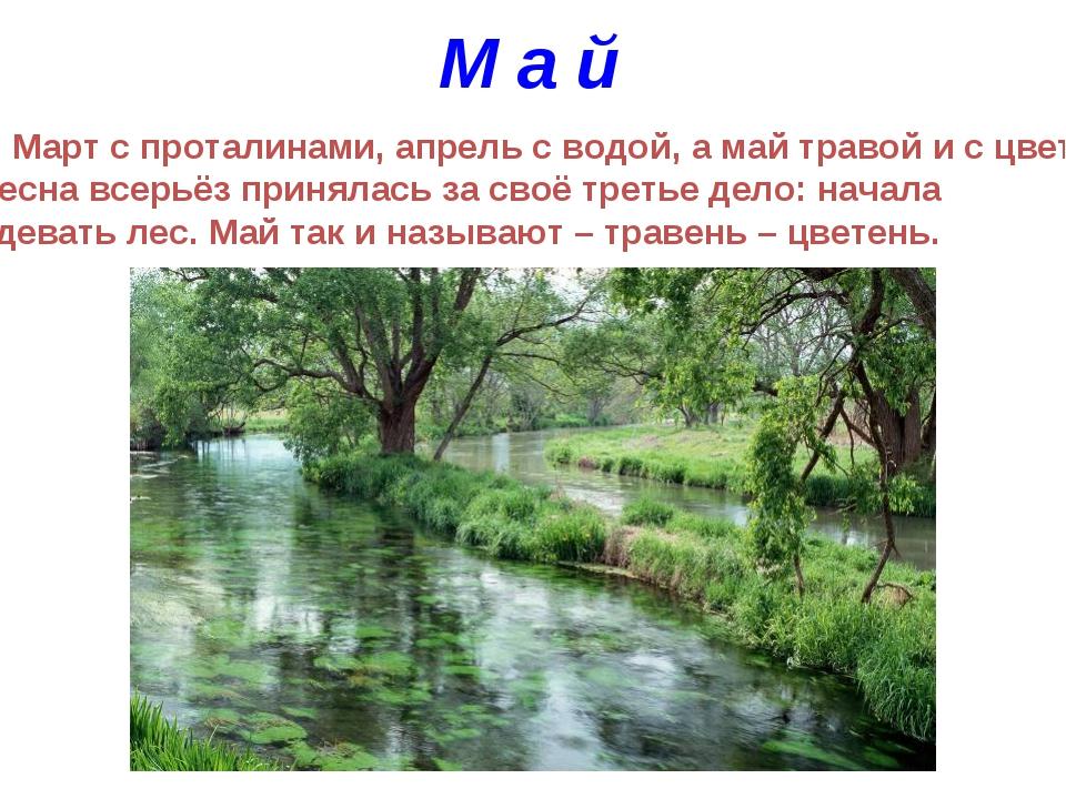 М а й Март с проталинами, апрель с водой, а май травой и с цветами. Весна все...