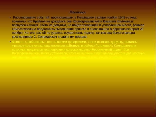 Пленение. Расследование событий, произошедших в Петрищеве в конце ноября 1941...
