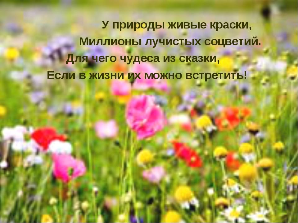 У природы живые краски, Миллионы лучистых соцветий. Для чего чудеса из сказк...