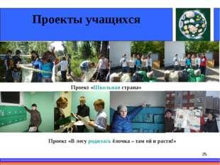 * Проекты учащихся Проект «Школьная страна» Проект «В лесу родилась ёлочка –