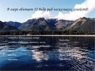 В озере обитает 52 вида рыб нескольких семейств: осетровые (байкальский осётр