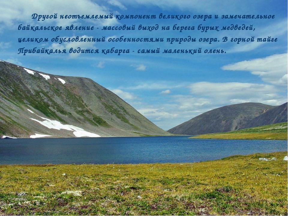 Другой неотъемлемый компонент великого озера и замечательное байкальское явле...