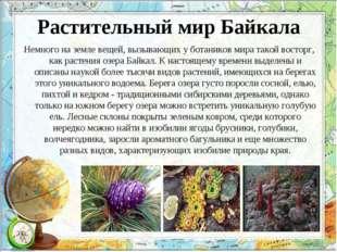 Растительный мир Байкала Немного на земле вещей, вызывающих у ботаников мира