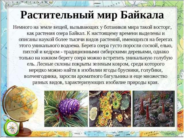 Растительный мир Байкала Немного на земле вещей, вызывающих у ботаников мира...