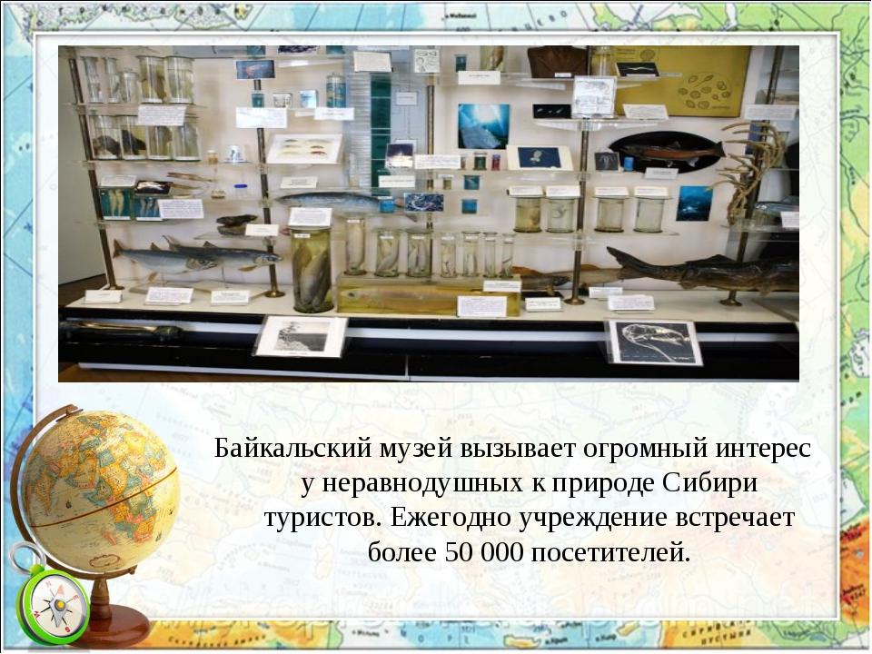 Байкальский музей вызывает огромный интерес у неравнодушных к природе Сибири...