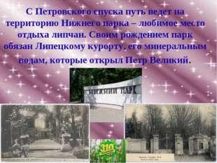 С Петровского спуска путь ведет на территорию Нижнего парка – любимое место о