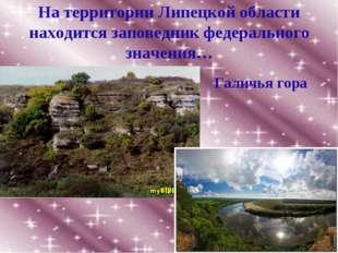 На территории Липецкой области находится заповедник федерального значения… Га