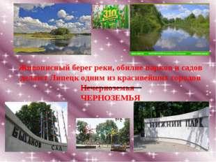 Живописный берег реки, обилие парков и садов делают Липецк одним из красивейш