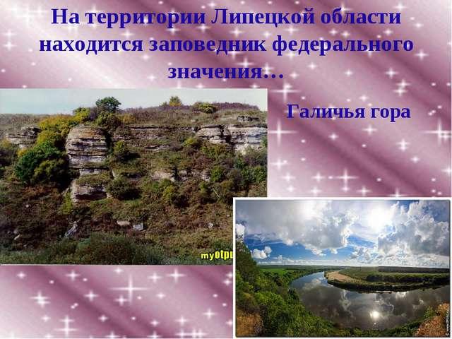 На территории Липецкой области находится заповедник федерального значения… Га...