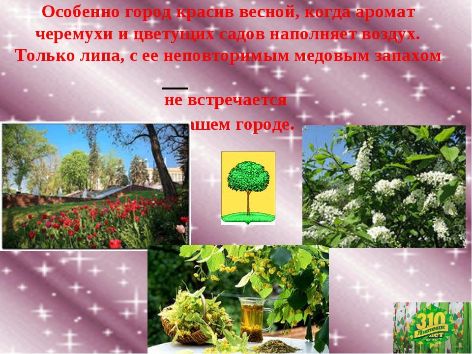 Особенно город красив весной, когда аромат черемухи и цветущих садов наполняе...