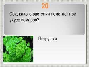 20 Сок, какого растения помогает при укусе комаров? Петрушки