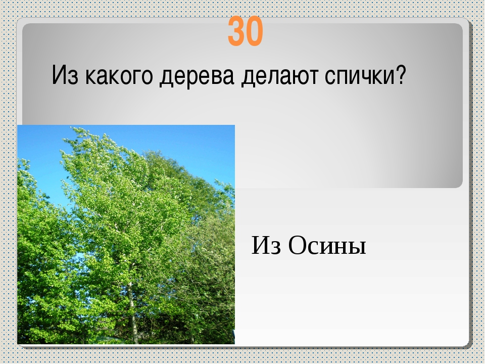 30 Из какого дерева делают спички? Из Осины