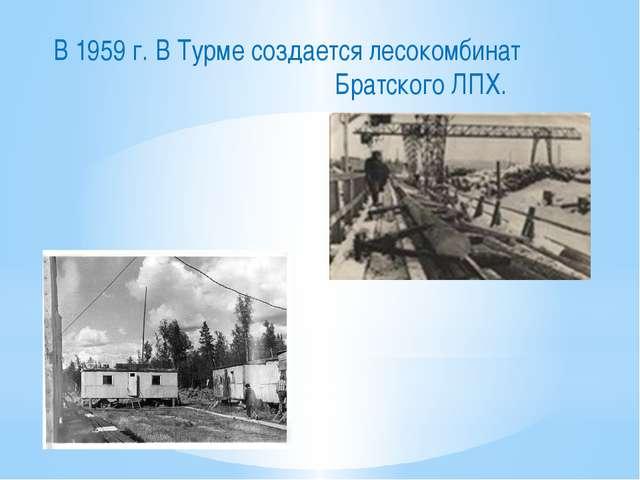 В 1959 г. В Турме создается лесокомбинат Братского ЛПХ.