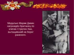 Медалью Марии Дикин награждён британец по кличке Стрелок Хан, вытащивший на б