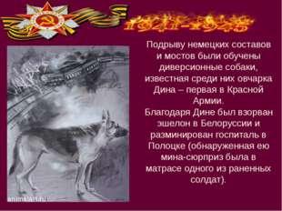 Подрыву немецких составов и мостов были обучены диверсионные собаки, известна