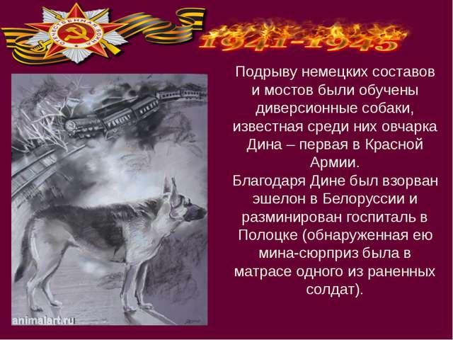 Подрыву немецких составов и мостов были обучены диверсионные собаки, известна...
