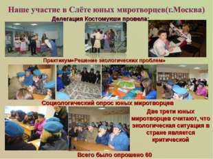 Практикум«Решение экологических проблем» Делегация Костомукши провела: Социо