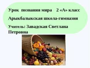 . Урок познания мира 2 «А» класс Арыкбалыкская школа-гимназия Учитель: Завадс