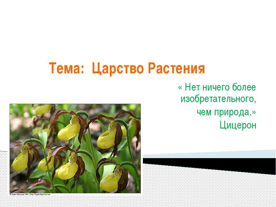 Тема: Царство Растения « Нет ничего более изобретательного, чем природа.» Циц...