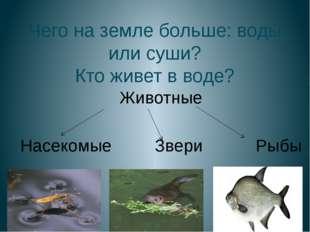 Чего на земле больше: воды или суши? Кто живет в воде? Животные Насекомые Зве