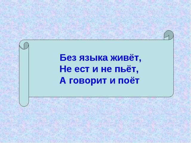 Без языка живёт, Не ест и не пьёт, А говорит и поёт