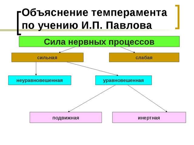 Объяснение темперамента по учению И.П. Павлова Сила нервных процессов сильная...