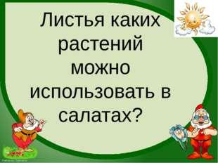 Листья каких растений можно использовать в салатах? FokinaLida.75@mail.ru