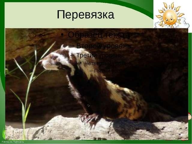 Перевязка FokinaLida.75@mail.ru