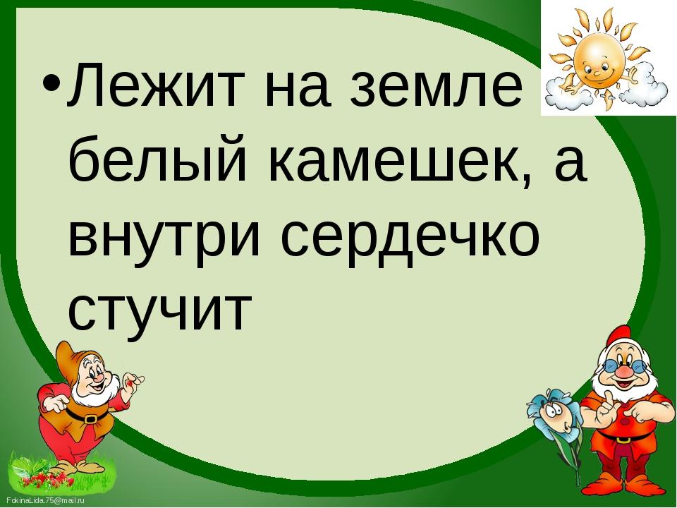 Лежит на земле белый камешек, а внутри сердечко стучит FokinaLida.75@mail.ru