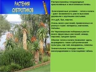 Распространены плодородные красноземные и желтоземные почвы. Благоприятные у