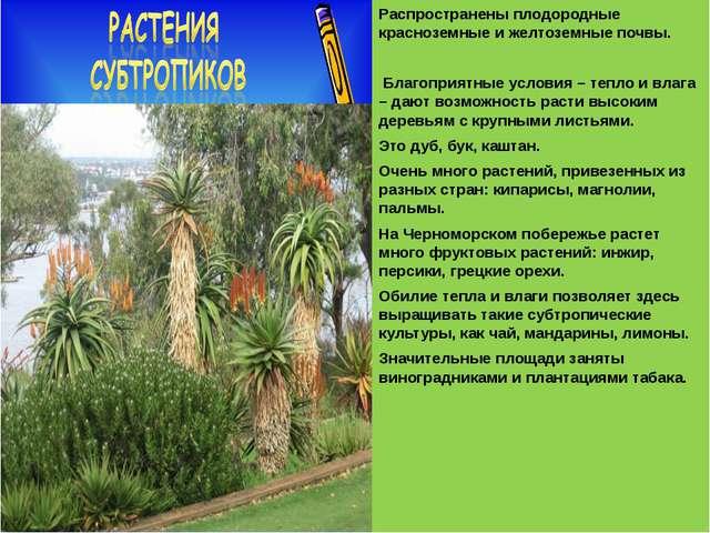 Распространены плодородные красноземные и желтоземные почвы. Благоприятные у...