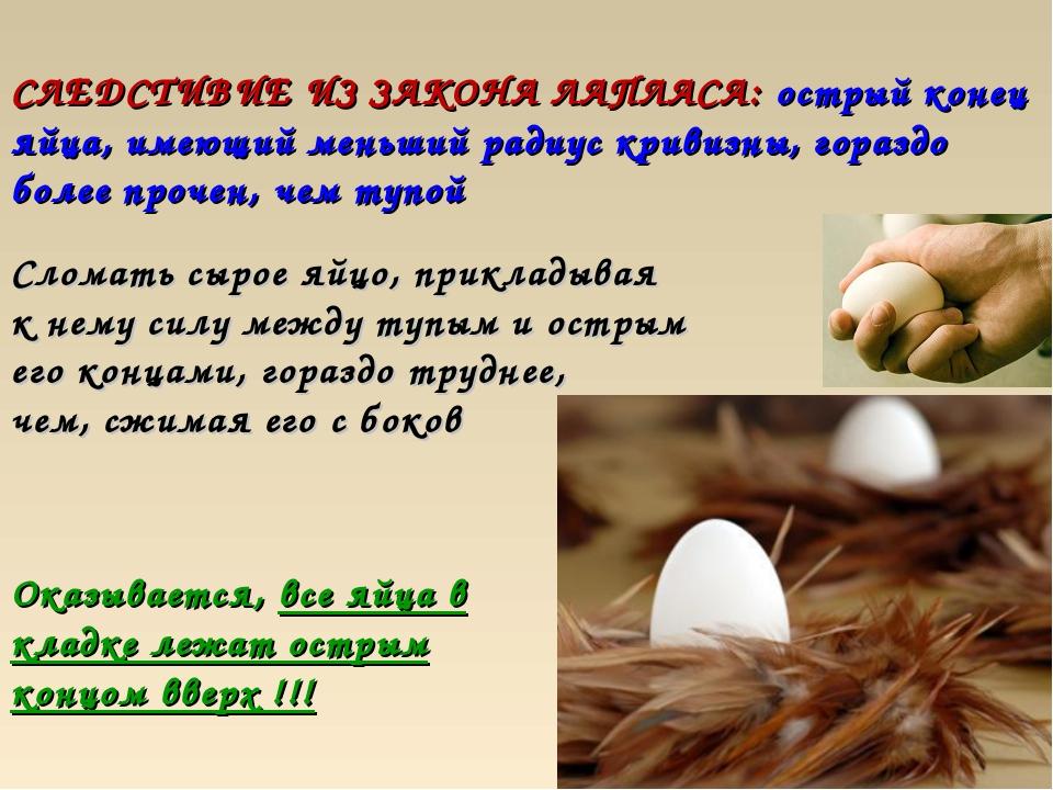 СЛЕДСТИВИЕ ИЗ ЗАКОНА ЛАПЛАСА: острый конец яйца, имеющий меньший радиус криви...