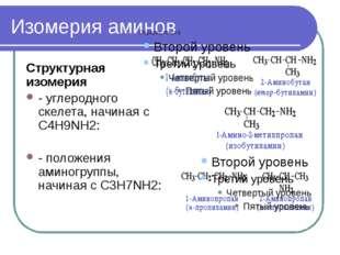 Изомерия аминов Структурная изомерия - углеродного скелета, начиная с С4H9NH2