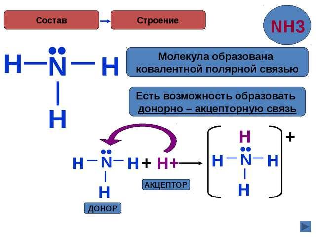 H Строение N H H •• Есть возможность образовать донорно – акцепторную связь...