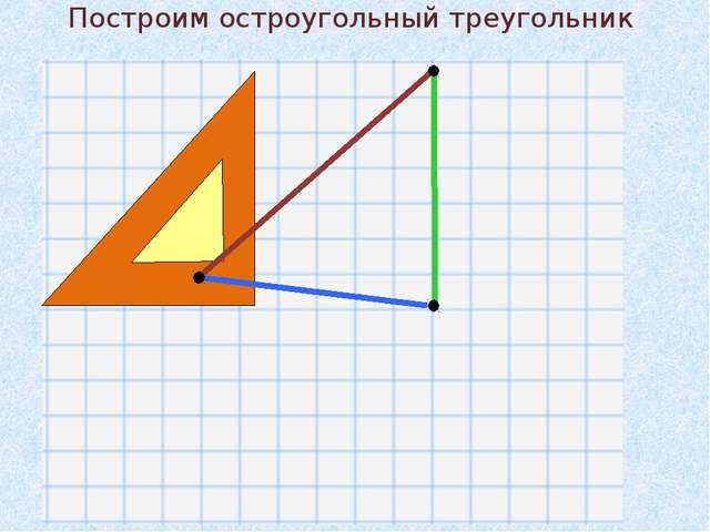Построим остроугольный треугольник