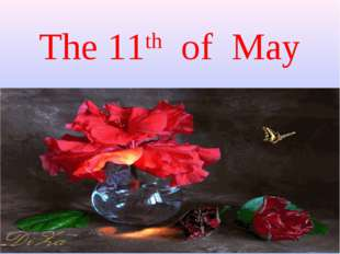 The 11th of May