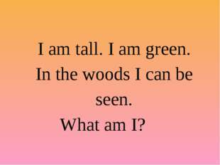 I am tall. I am green. In the woods I can be seen. What am I?