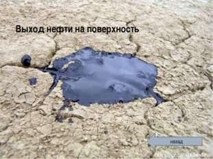 Выход нефти на поверхность назад