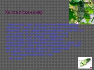 Қыста піскен қияр Қазіргі кезде қияр қысы-жазы дастарханымыздан табылады. Қия