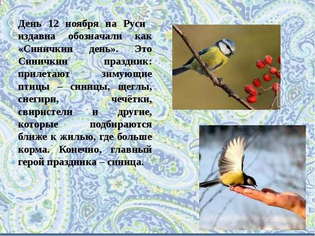 День 12 ноября на Руси издавна обозначали как «Синичкин день». Это Синичкин п...
