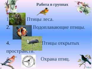 Работа в группах 1. Птицы леса. Водоплавающие птицы. . Птицы открытых простра